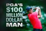 TIGER_HUNDRED_MILLION_TITLE